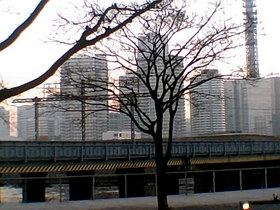 20101221a.jpg