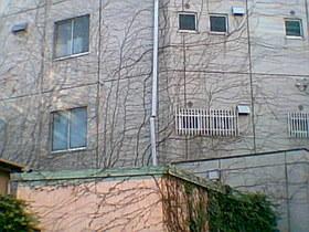 20101224g.jpg