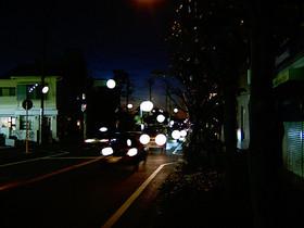 20101229d2.jpg