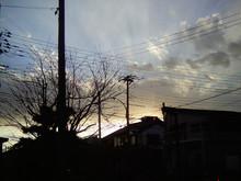 20110130c.jpg